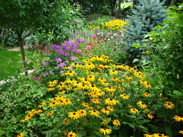 Backyard Landscape Planting in Green Bay