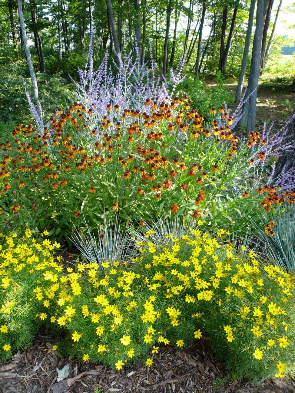 Landscape Backyard Planting in Green Bay