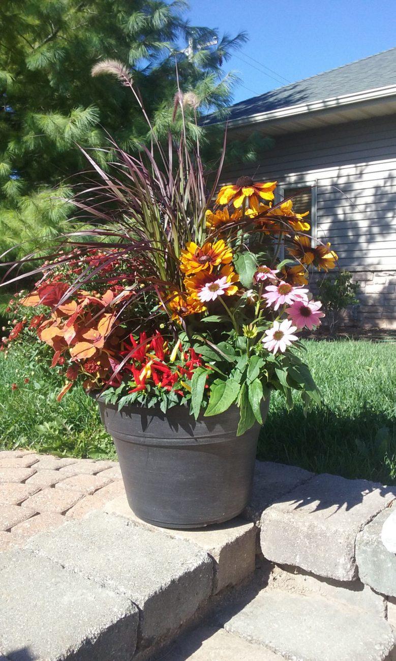 Planting bed weeding and maintenance landscape associates for Weeds garden maintenance