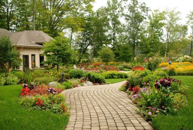 Backyard Landscape Planting in Northeastern Wisconsin