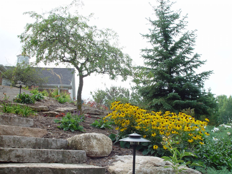 Backyard Landscape Planting Design in Green Bay