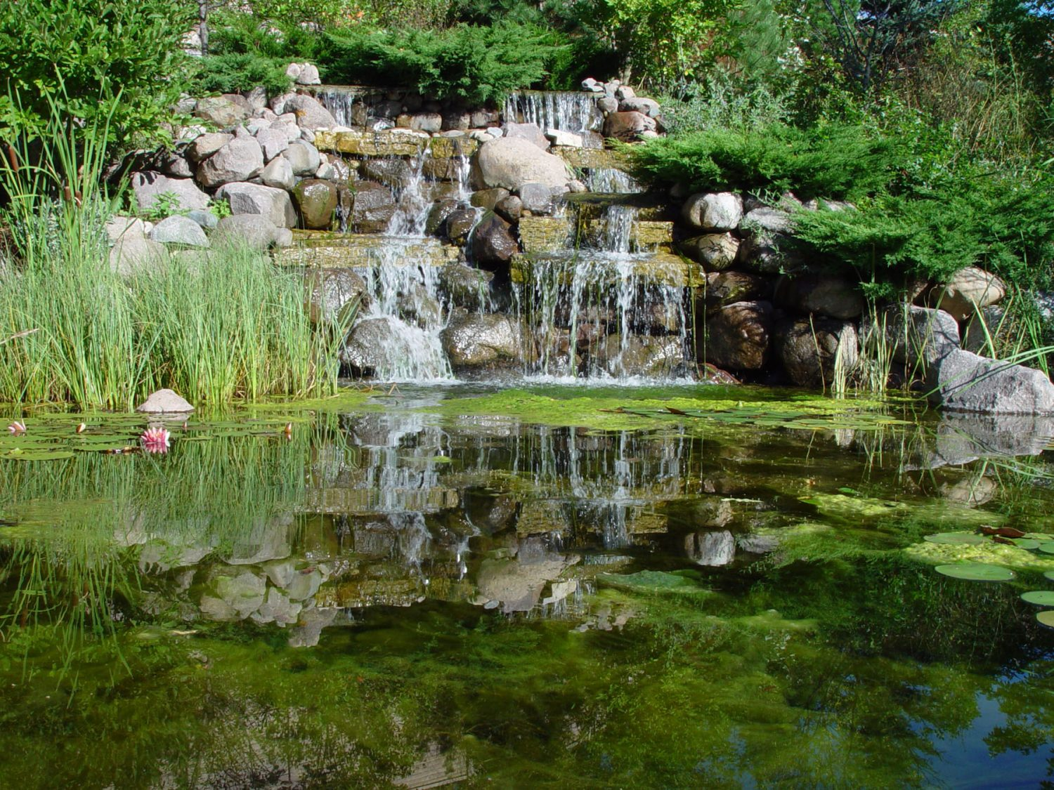 Waterfall and Pond in Landscaping in Suamico