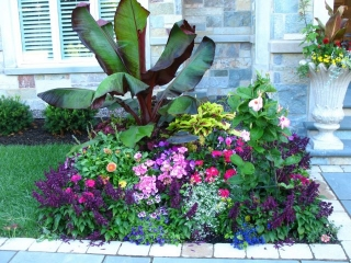 Season Color added around a Natural Stone Walkway in Green Bay