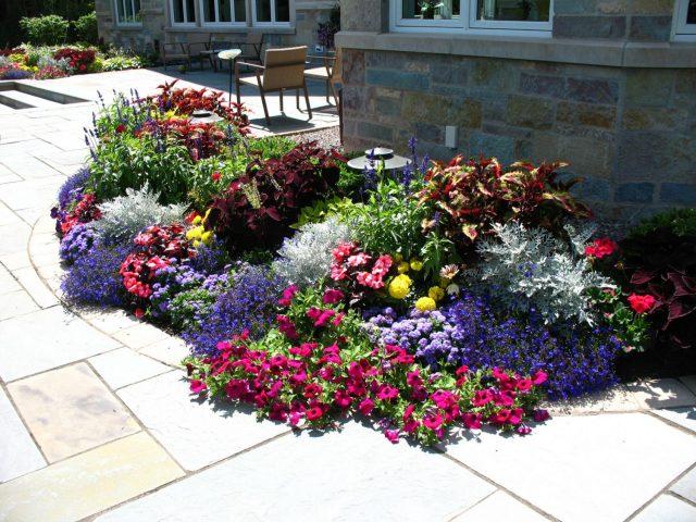 Seasonal color planting