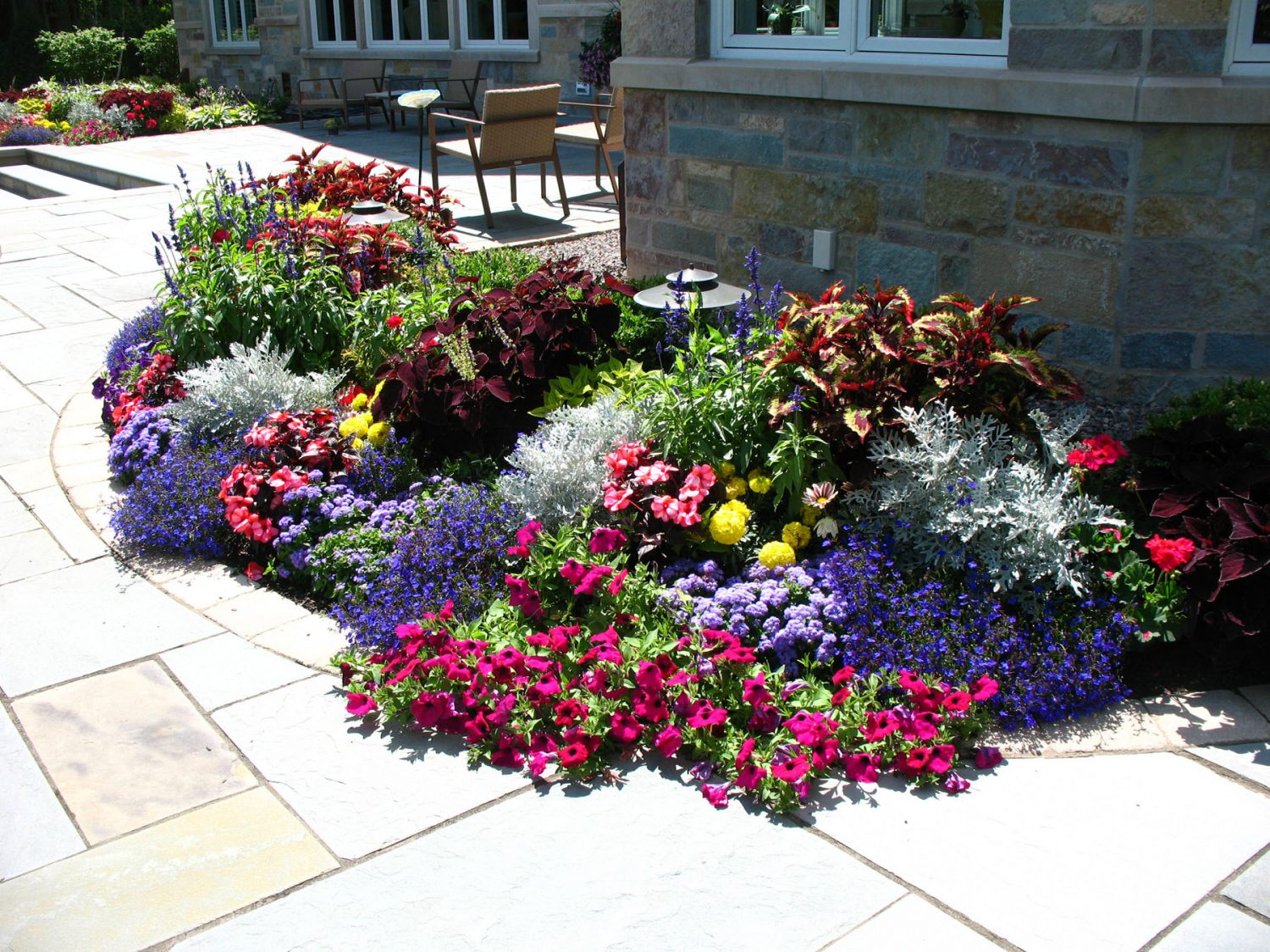 Seasonal color planting