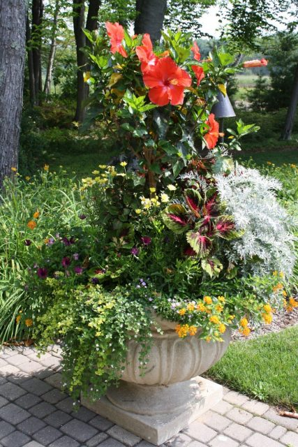 Seasonal Color added to a Planter in Green Bay