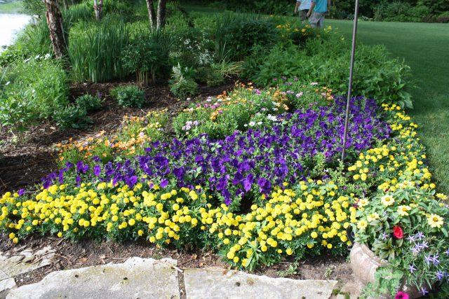 Landscape Maintenance, Annuals, Green Bay