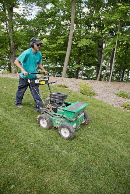 Lawn Care in Appleton