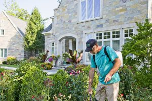 Landscape Maintenance in Green Bay