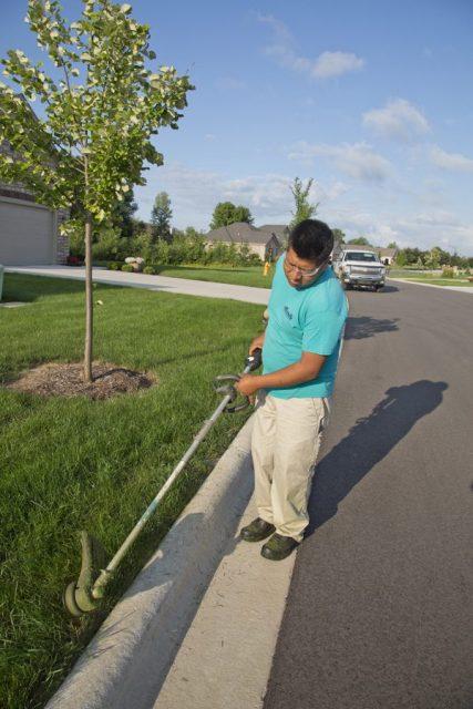 Lawn Care for Condo Association in De Pere