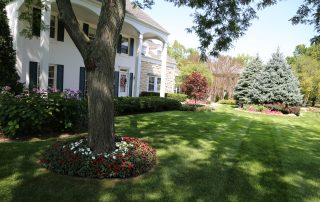 Example of Landscape Curb Appeal in Green Bay Area