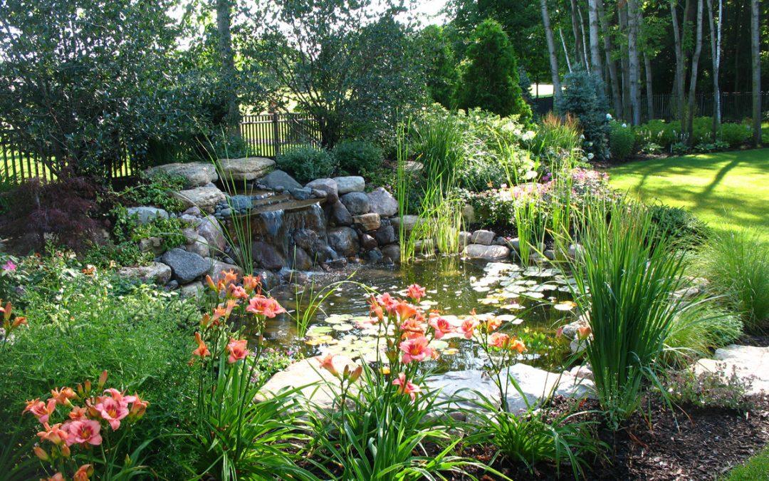 Make a Landscape Resolution for 2020!