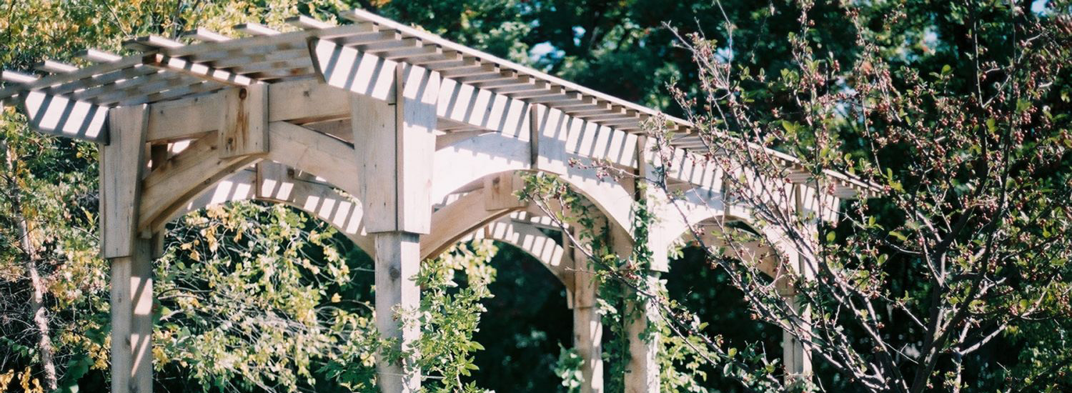 A large wooden pergola with vines and bushes.