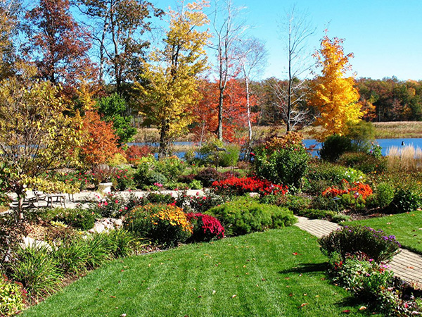 A grassy yard lined with flowers and trees whose leaves have changed to yellow and red for fall.