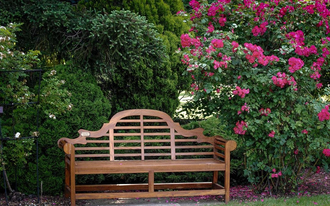 Can A Garden Bench Bring Beauty To Your Home?