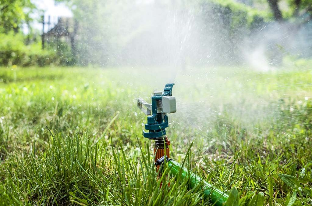 Answers To 5 Common Lawn Watering Questions